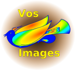 Vos images